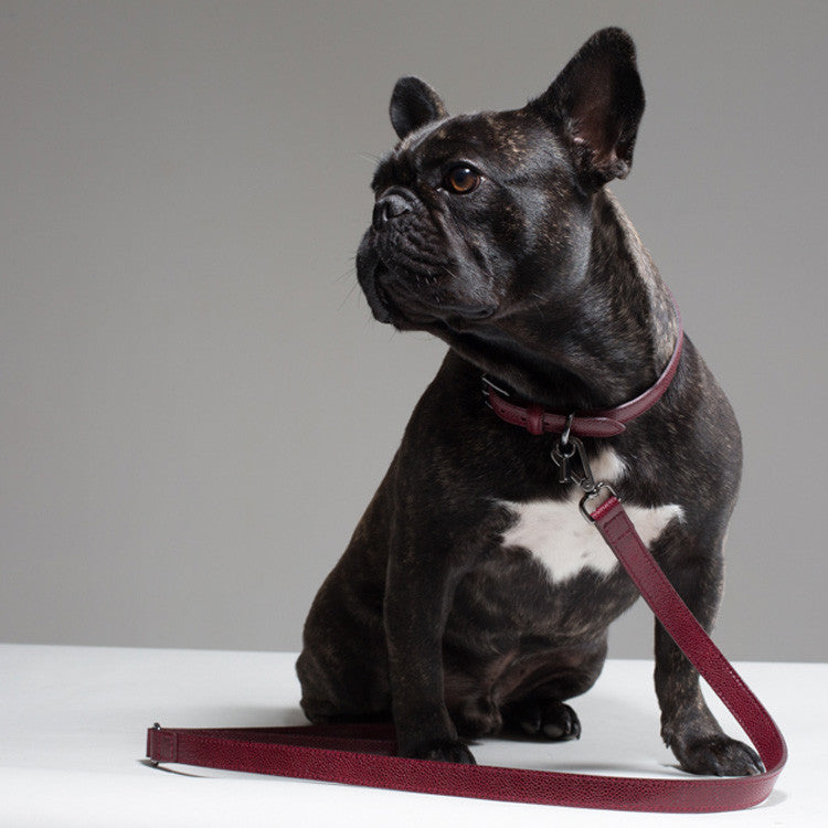 Graham Dog Collar - Wine