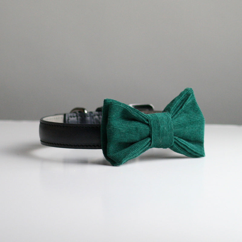 Rory Corduroy Bow Tie - Teal