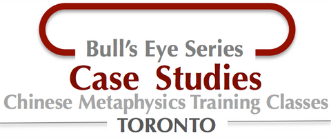 Bull's Eye Series- Case Studies Online version