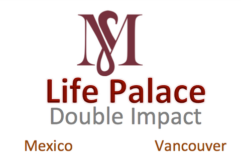 Life Palace Analysis DOUBLE IMPACT