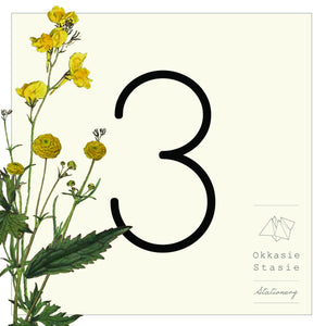 Botanicals - Table Numbers - ZA Kreated