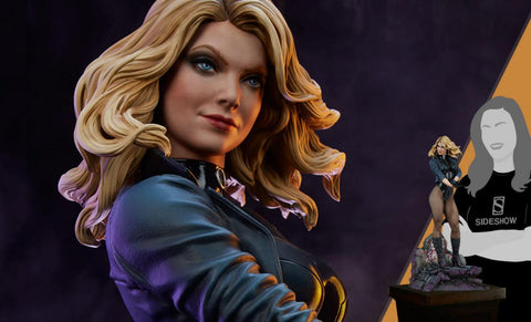 PRE-ORDER: Sideshow Collectibles DC Comics Black Canary Premium Format Figure