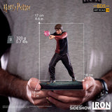 PRE-ORDER: Iron Studios Harry Potter 1/10 Scale Statue