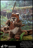 Hot Toys Wicket Sixth Scale Figure