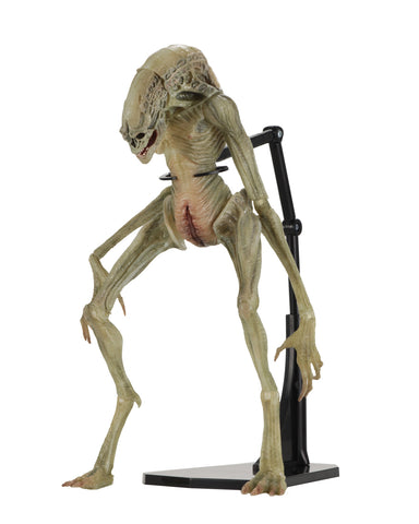 "NECA Aliens: Deluxe Alien Resurrection Newborn 7"" Action Figure"