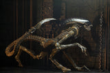 "Neca Alien 3 Ultimate Dog Alien 7"" Scale Action Figure"