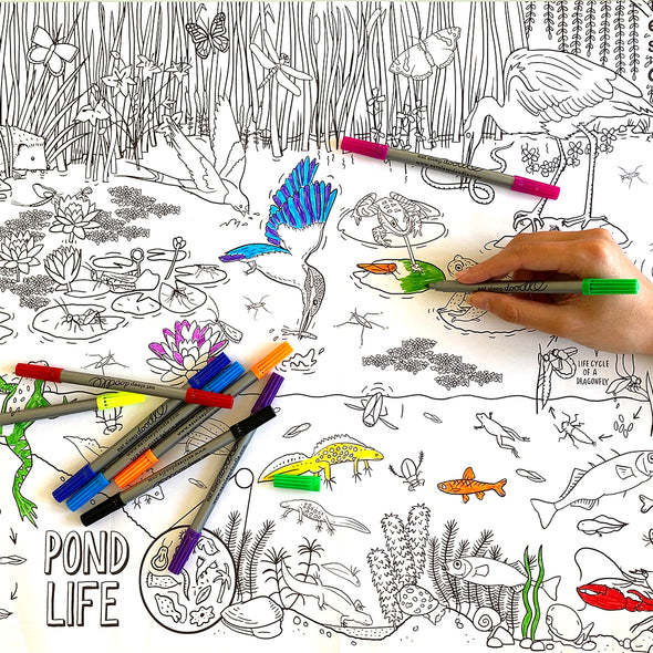 frogs, fish, birds coloring