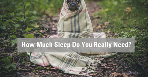 How much sleep do you really need image by Crave Mattress
