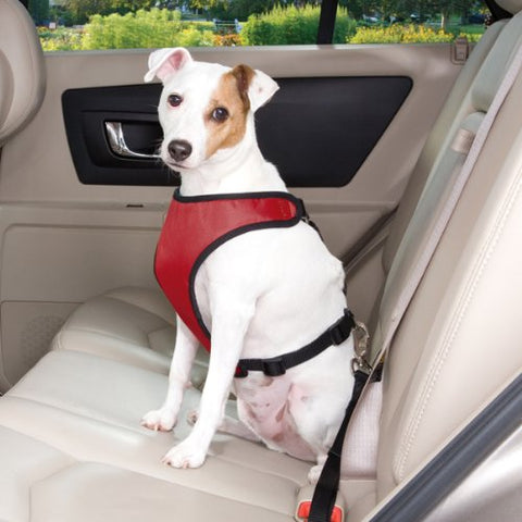 Relgard Dog Seat Belt Harness and Tether for Cars, Amazing Quality and Adjustable, Dog Seat Belt Restraint for Small and Large Dogs and Cats