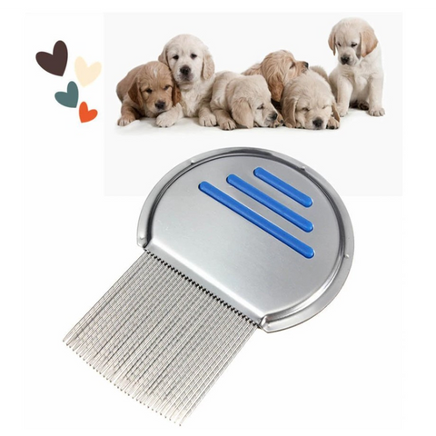 Image of Pet Dog Lice Comb