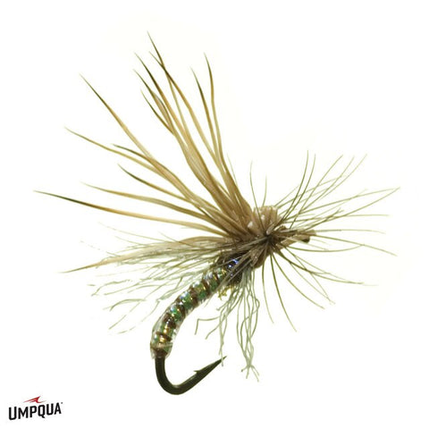 Missing Link Caddis - Olive