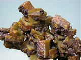 Wulfenite, Los Lamentos, Mexico, Eric Peterson Collection, Miniature 2.7 x 4.5 x 6.5 cm, $45. Online 11/6. SOLD.