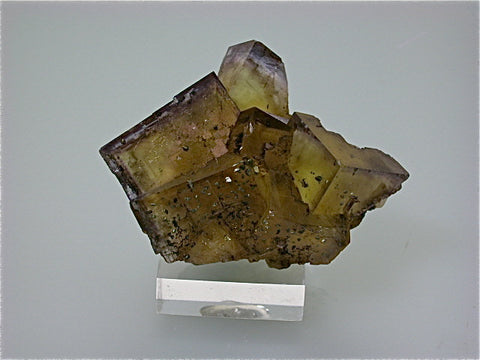 Fluorite with Chalcopyrite, Annabel Lee Mine, Ozark-Mahoning Mining Company, Harris Creek District, S. Illinois, Mined 1988, Kalaskie Collection #42-143, Miniature 5.0 x 5.7 x 8.0 cm, $350. Online 1/14.