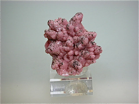 Rhodochrosite with Pyrite, Silver Bow County, Butte, Montana 3 x 4 x 4.5 cm $350. Online 9/06. SOLD.