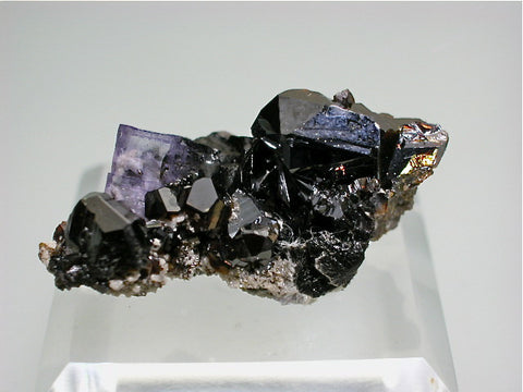 Fluorite and Sphalerite, Rosiclare Level, North-End, Denton Mine, Ozark-Mahoning Company, Harris Creek District, Southern Illinois 1.5 x 1.7 x 3.5 cm $25. Online August 1 SOLD