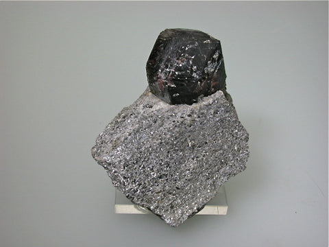 Garnet var. Almandine in Mica, Altay, Xinjiang, China, Mined ca. 2008, Kalaskie Collection #1024, Small Cabinet 3.5 x 6.0 x 7.5 cm, $85. Online 2/27.