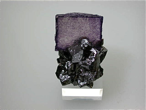 Fluorite and Sphalerite, Elmwood Complex, Carthage, Smith County, Tennessee, Mined c. 1991, Kalaskie Collection #42-209, Miniature 3.0 x 4.0 x 4.0 cm, $75.  Online 11/10