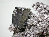 SOLD Galena with Dolomite, Bonneterre Formation, Sweetwater Mine, Viburnum Trend, Missouri Miniature 4.5 x 5 x 8 cm $75. Online 12/20