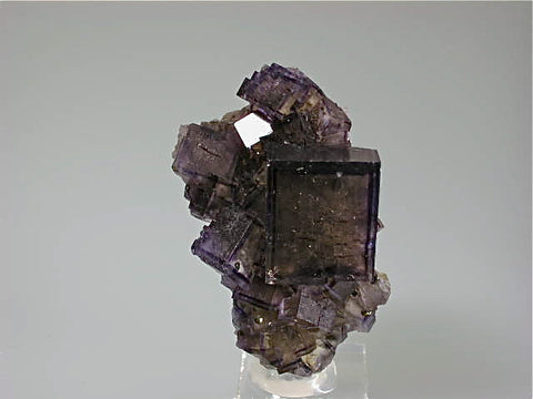 Fluorite, Rosiclare Level Minerva #1 Mine, Ozark-Mahoning Company, Cave-in-Rock District, Southern Illinois, Mined ca. 1991-1993, Koster Collection #00049, Miniature 3.0 x 3.5 x 6.0 cm, $250. Online 03/07.  SOLD.