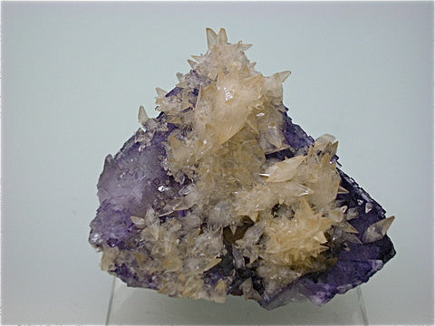 Calcite on Fluorite, Rosiclare Level Minerva #1 Mine, Ozark-Mahoning Mining Company, Cave-in-Rock District, S. Illinois, Mined April 1995, Kalaskie Collection #42-268, Miniature 5.0 x 5.5 x 6.0 cm, $250. Online 1/12.