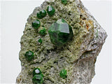 Andradite var. Demantoid, Belqey's Mountain, Takab, West Azerbaijan, Iran, Collected 2016, Miniature 3.0 x 3.5 x 6.0 cm, $650. Online 2/27.