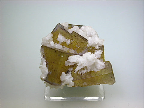 Calcite on Fluorite, Bethel Level, M.F. Oxford #7 Mine attr., Ozark-Mahoning Company, Cave-in-Rock District, Southern Illinois Small cabinet 4 x 5 x 5 cm $125. Online 10/28.