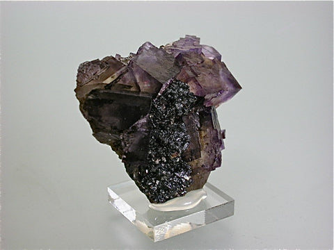 Fluorite and Sphalerite, Rosiclare Level, Minerva #1 Mine, Ozark-Mahoning Company, Cave-in-Rock District, Southern Illinois Miniature 2.5 x 5 x 5.5 cm $60. Online 10/28