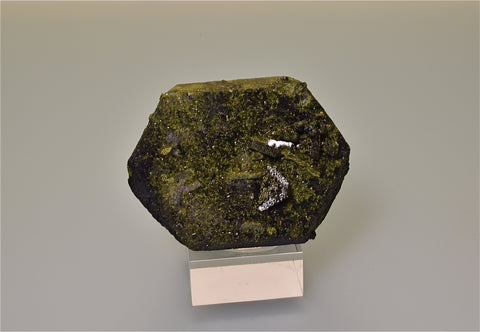 Epidote, Raywoo Mine, Quetta, Baluchistan, Pakistan, Mined ca. 2010, Kalaskie Collection #231, Small Cabinet, 4.0 x 6.2 x 8.0 cm, $250.  Online 3/7.