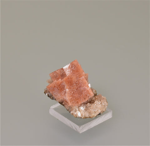 Chabazite, Wasson Bluff, Cumberland County, Nova Scotia, Canada, Kalaskie Collection #303, Miniature 1.5 x 2.5 x 3.5 cm, $65.  Online 3/7.