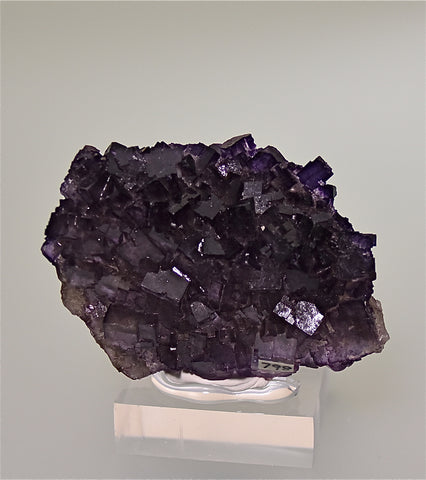 Fluorite, Musquiz, Coahuila, Mexico, Holzner Collection #798, Miniature 1.5 x 4.0 x 6.5 cm, $65.  Online 4/30.