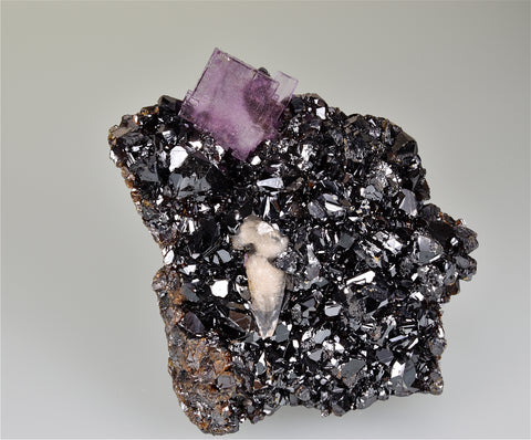 SOLD Sphalerite and Fluorite, Sub-Rosiclare Level, Deardorff Mine, Ozark-Mahoning Company, Cave-in-Rock District, Southern Illinois, Mined c. 1960's, Wayne Fowler Collection, Small Cabinet 4.0 x 9.0 x 10.5 cm, $450. Online 8/10.