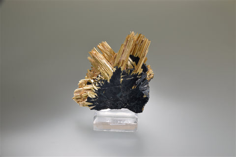 Rutile and Hematite, Ibitiara, Bahia, Brazil, Small cabinet 1.2 x 6.5 x 6.5 cm Mined c. 2007, Kalaskie Collection #1362, $650. Online 11/2.