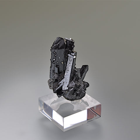 ON APPROVAL. Ilvaite and Quartz, First Sovietskiy Mine, Dal'negorsk, Primorskiy Kray, Russia, Mined 1996, Kalaskie Collection #82, Miniature 2.7 x 3.5 x 4.2 cm, $450.  Online 6/14