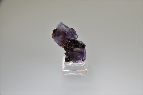 SOLD Fluorite and Sphalerite, Rosiclare Level Minerva #1 Mine, Ozark-Mahoning Company, Cave-in-Rock District, Southern Illinois, Mined November 1995, Kalaskie Collection, Miniature 1.5 x 2.0 x 4.5 cm, $100.  Online 10/6.