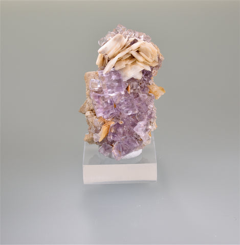 Fluorite with Barite, Berbes Spain, Ralph Campbell Collection, Miniature 3.5 x 3.5 x 6.0 cm, $250. Online 10/4.