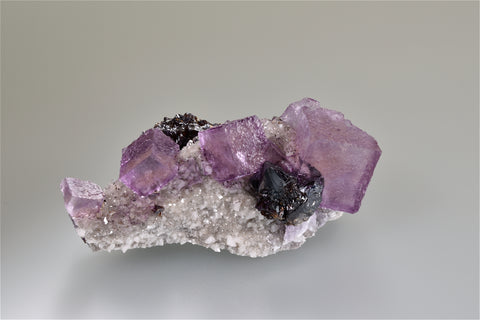 Fluorite and Sphalerite on Dolomite, Elmwood Complex near Carthage, Smith County, Tennessee, Mined 1985, Ralph Campbell Collection, Small Cabinet 5.0 x 5.0 x 11.0 cm, $350. Online 11/1.