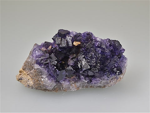 Fluorite, Rosiclare Level, Lead Hill, Cave-in-Rock Sub-district, Southern Illinois, Field Collected November 2018, Small Cabinet 3.0 cm x 5.2 cm x 11.0 cm, $125.  Online 8/15.