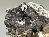 Quartz and Pyrite on Sphalerite, Mogila Mine, Madan District, Bulgaria, Mined c. 2012, Medium Cabinet 6.0 x 9.0 x 12.0 cm, $25.  Online January 30.