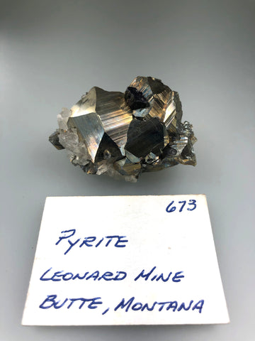 Pyrite and Enargite, Leonard Mine, Butte Mining District, Butte-Sliver Bow, MT, ex. Louis Lafayette Collection #673, Miniature 2.6 x 2.7 x 5.0 cm, $40. Online 12/9