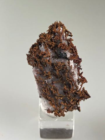 Copper, White Pine Mine, Lake Superior Copper District, Ontonogan County, Michigan, ex. Louis Lafayette Collection, Thumbnail 1.5 x 1.5 x 3.0 cm, $15. Online 12/17