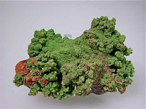 Conichalcite, Ojuela Mine, Mapimi, Durango, Mexico Small cabinet 4 x 5 x 7.5 cm $45. Online July 10. SOLD.