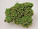 Pyromorphite, Guilin, Guangshi Province, China Miniature 2.7 x 4.5 x 6 cm $450. Online 3/2 SOLD
