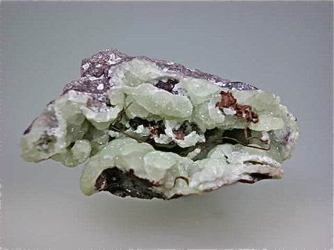 Copper Wire on Prehnite, Osceola Mine, Lake Superior Copper District, Houghton County, Michigan Miniature 2.5 x 3.5 x 4.5 cm $25 SOLD