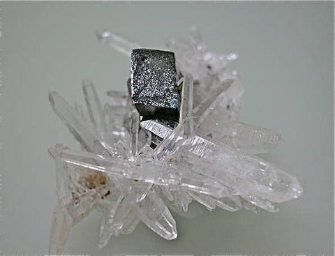 Hubnerite and Quartz, Teo's Workings, Mundo Nuevo Mine, Huamachuco, La Libertad, Peru, Mined 2012, Miniature 5.0 x 5.0 x 7.5 cm, $300.  Online 3/4/15 SOLD