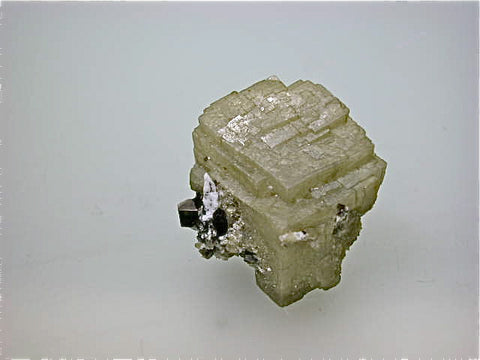 Siderite with Muscovite, Nello L. Teer Quarry, near Mill Grove, Durham, North Carolina Miniature 2 x 3 x 3 cm $300. online 8/26