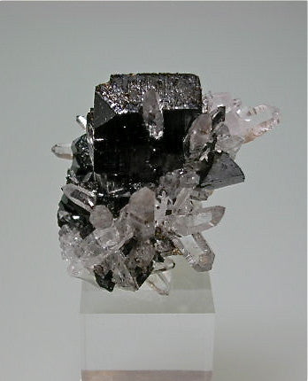 Hubnerite and Quartz, Mundo Nuevo Mine, Peru Miniature 3 x 3 x 3.2 cm $125. Online 3/21. SOLD.