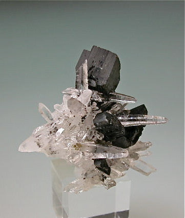 Hubnerite and Quartz, Mundo Nuevo Mine, Peru Miniature 3 x 4 x 4 cm $125.  SOLD.