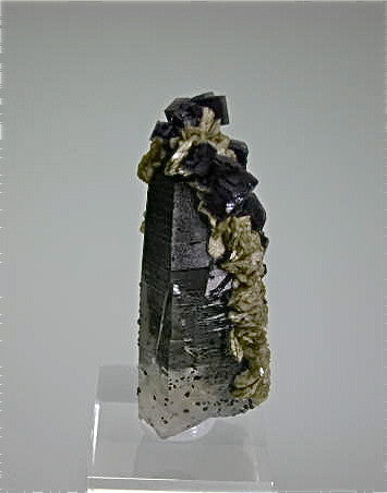 Fluorite and Siderite on Quartz with Muscovite, Panasqueira Complex, Beira Beixa, Portugal Small cabinet 2 x 2.2 x 5.2 cm $250. Online 3/19 SOLD