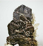 Pyrrhotite and Calcite with Quartz, Trepca Complex near Mitrovica, Kosovska Municipality, Kosovo, Mined 2014, Small Cabinet 4.0 X 4.5 X 6.0 cm, $450.  Online 8/19. SOLD.