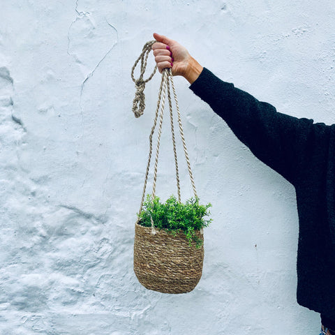 Seagrass Hanging Plant Pot